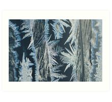 Ice crystals pattern Art Print