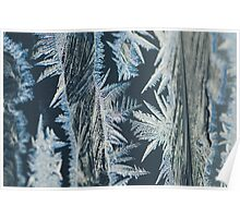 Ice crystals pattern Poster