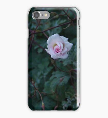 Quiet Reflection iPhone Case/Skin