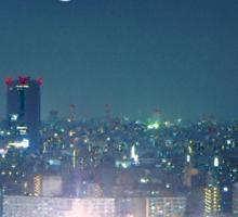 TOKYO is my Home Sticker