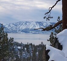 Lake Tahoe by HaveANiceDaisy