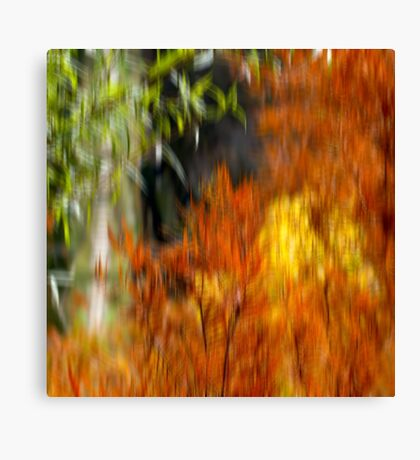 autumn flames Canvas Print