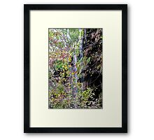 November at Gorman Falls Framed Print