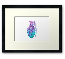 Colorful Grenade Framed Print