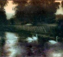 Swans on a pond circa 1910 by cherylkerkin