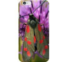Six Spot Burnet Moth iPhone Case/Skin