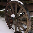 Wagon Wheel by Kenneth Hoffman