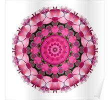 Beautiful pink Blossoms 001, Nature Mandala Poster