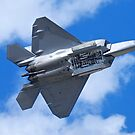 Reno Air Races 2014 - F-22 Bomb Bay Doors by rrushton