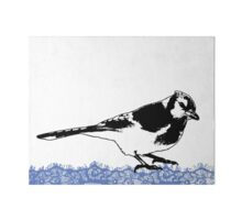 Blue Jay - Critter Love Collection 2 of 6 Gallery Board