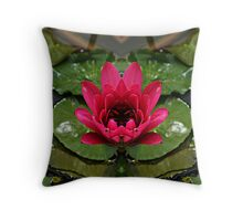 In the pond of reflection Throw Pillow