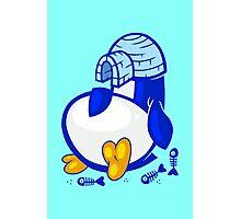 Fat Penguin Photographic Print