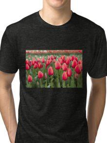 Tulips fields  Tri-blend T-Shirt