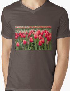 Tulips fields  Mens V-Neck T-Shirt