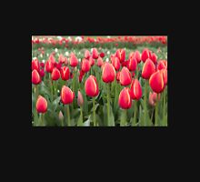 Tulips fields  Unisex T-Shirt