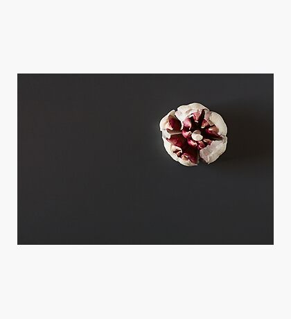 Red garlic over a dark background Photographic Print