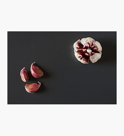 Garlic cloves over a dark background Photographic Print