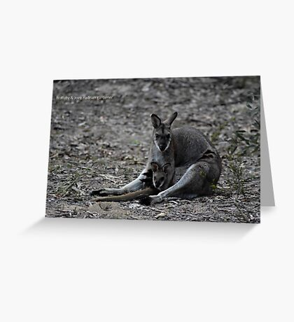 Wallaby & Joey Greeting Card