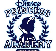Disney Princess Academy by Ellador