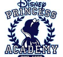 Disney Princess Academy by Ellador
