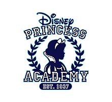 Disney Princess Academy Photographic Print