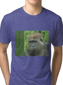 Memories Tri-blend T-Shirt