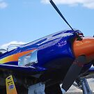 Reno Air Races 2014 - P-51 Mustang by rrushton