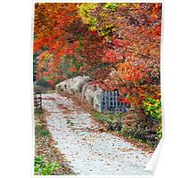 Autumn Country Lane Poster