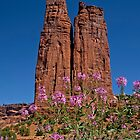 Spider Flowers and Spider Rock by Lucinda Walter