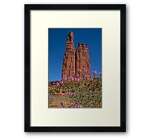 Spider Flowers and Spider Rock Framed Print