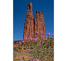 Spider Flowers and Spider Rock Photographic Print