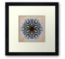 Cottonwood Mandala 4 Framed Print