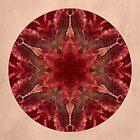 Red Star Mandala by Gail S. Haile