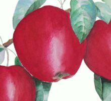 Apples in Autumn Sticker