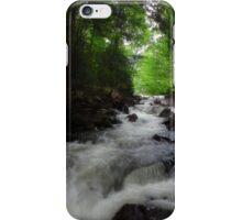 Rapids Algonquin iPhone Case/Skin