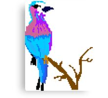 Cool Bird Has a Cool Day Canvas Print
