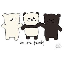 We are family Photographic Print