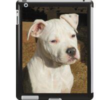 Teena iPad Case/Skin