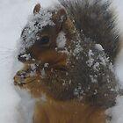 """""""Skippy In Snow"""" by dfrahm"""