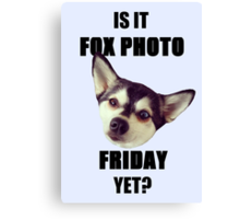 Is it #FoxPhotoFriday Yet? Canvas Print