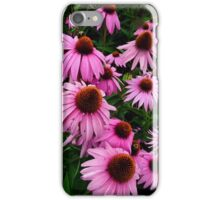 Cone Flowers iPhone Case/Skin