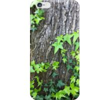 The Faraway Tree: Parkville iPhone Case/Skin