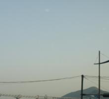 Busan Coast Sticker