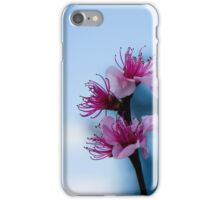 Cool Blossom iPhone Case/Skin