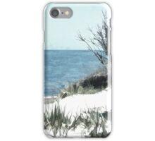Beach Fence iPhone Case/Skin
