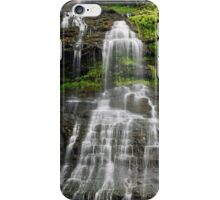 Cathedral Falls in West Virginia iPhone Case/Skin