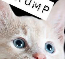 Pussies Against Trump Sticker