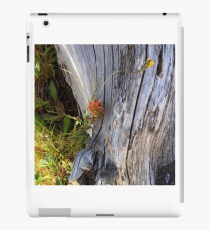 Indian Paintbrush - Mt. St. Helens iPad Case/Skin