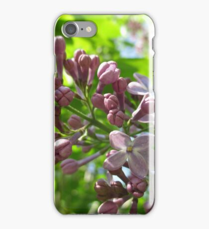 Looking Up At Lilac iPhone Case/Skin
