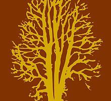 FALL GLORY in a BEECH tree forest! by Kricket-Kountry